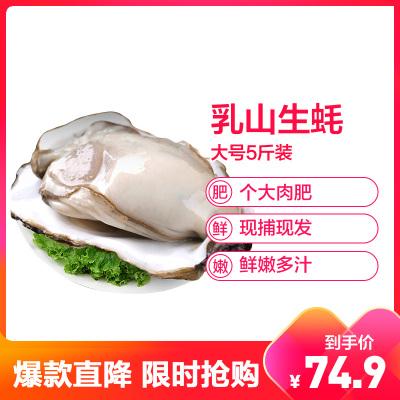 【順豐直達】鮮活乳山三倍體生蠔 精品大號5斤裝 單個150-200g 牡蠣海蠣子 生鮮貝類 新鮮海鮮水產 星優選