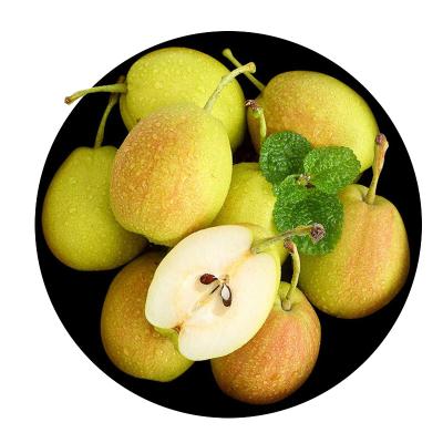 【顺丰配送】库尔勒香梨10斤 梨子 新鲜水果