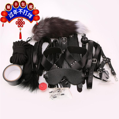 谜姬(Mizz Zee) SM12件套捆绑束缚成人用品另类情趣玩具爱爱性工具捆绑束缚男女用夹乳器穿戴口球皮鞭