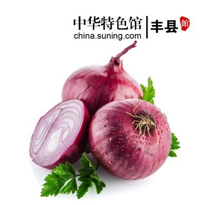 【中华特色】丰县馆 新鲜洋葱2.5斤装 紫皮洋葱红皮圆葱