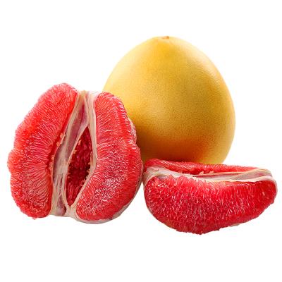 平和紅心柚2個 單果1.7-2.5斤【 拍2件合并發1箱】