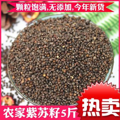 新貨 紫蘇子籽5斤 云南農家生紫蘇種子2500g榨油蘇子燒烤調料餡料