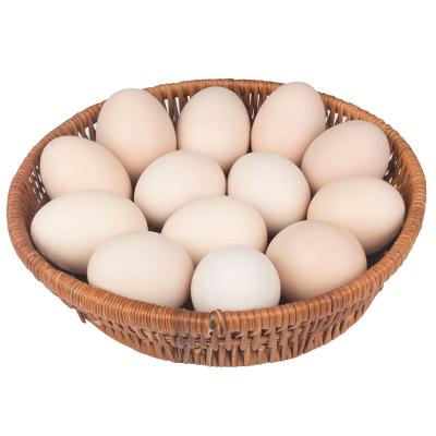 预计2月3日发货 江山 JS 新鲜农家鸡蛋 30个装 纸箱装 约1300g