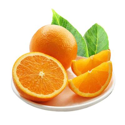 陈小四水果 湖北秭归 脐橙 2.5斤 橙子 新鲜水果 生鲜水果 国产 其他