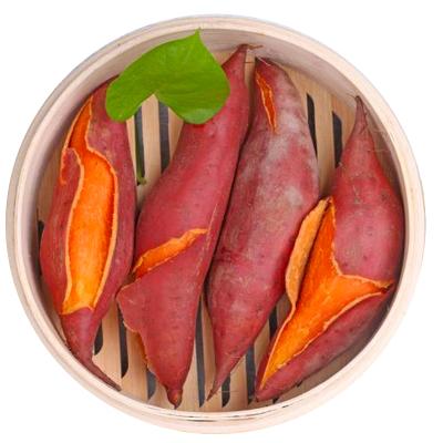 地瓜皇后六鳌沙地红薯新鲜10斤装含箱糖心大叶红现挖番薯地瓜农家