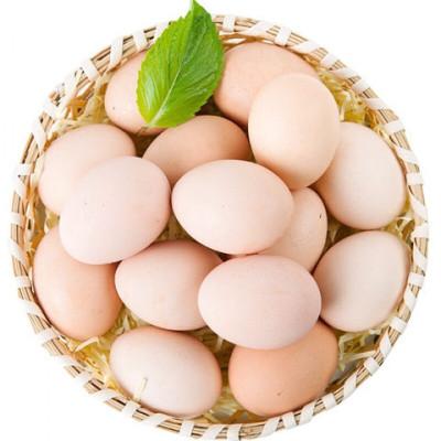 散養柴雞蛋40枚裝 破損包賠 新鮮土雞蛋草雞蛋笨雞蛋 非鵪鶉蛋鴨蛋鵝蛋變蛋 五彩小淘