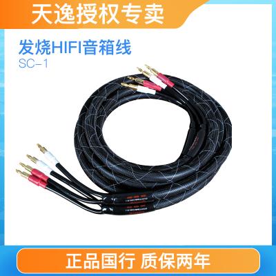 Winner/天逸SC-1音響專用喇叭線hifi高保真無氧銅銀環蛇音箱線發燒入門音響線