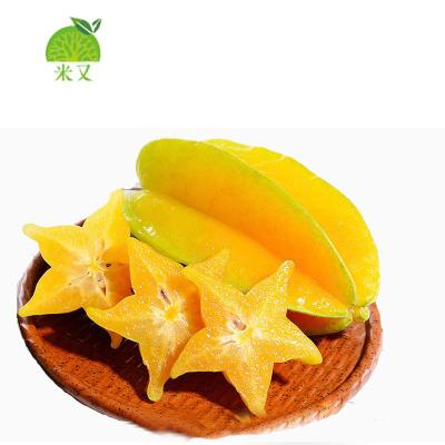 【2件起拍 送酸梅粉】新鲜杨桃热带水果杨桃 750g (拍2件合并发货)