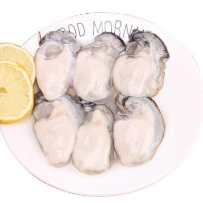 乳山生蠔生蠔肉鮮活現剝生蠔牡蠣海蠣子鮮活海鮮水產一箱 3斤生蠔肉