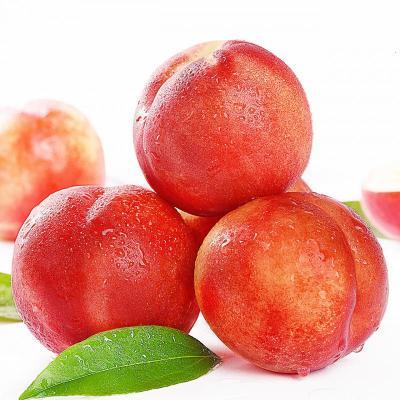 油桃10斤 桃子 新鮮水果 甜脆桃