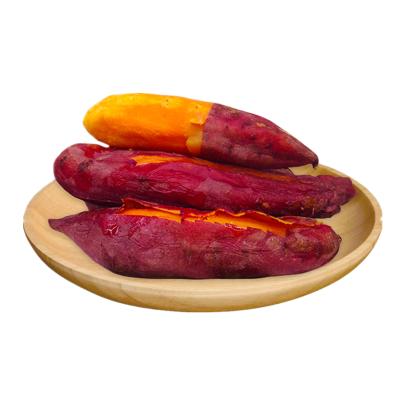 【靚果匯】六鰲蜜薯帶箱2.5斤裝 精品禮盒裝 純沙地種植 香甜軟糯 現挖現發(2件合并一箱發貨)