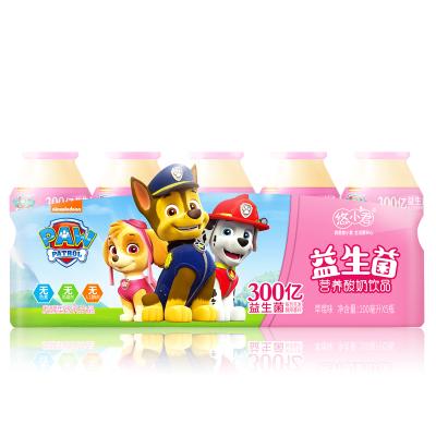汪汪队乳酸菌饮品 酸奶饮料 原味礼盒装100ml*30瓶
