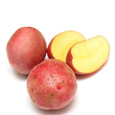 薯家上品 云南紅皮小土豆2.5斤 迷你小土豆新鮮蔬菜現挖馬鈴薯農家自種紅皮山芋黃心