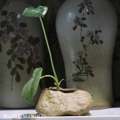 景德鎮異形養水草植物 小花盆 臺面花盆 禪意水草花盆 擺件