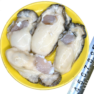 三座海 煙臺乳山牡蠣肉生蠔肉海鮮 2000g 生蠔刺身 海蠣子肉 每天現剝現發貨 海鮮水產