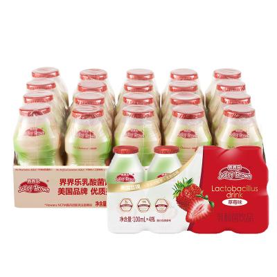 界界乐儿童乳酸菌饮料草莓味经典5条装