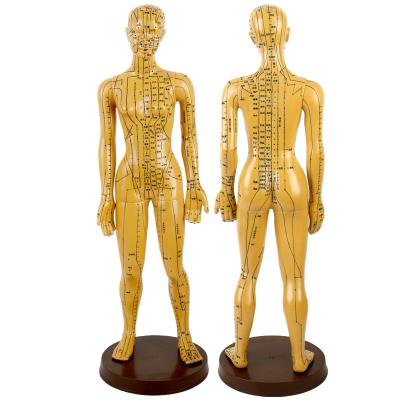 王太医针灸穴位经络人体模型小铜人男女模特超清晰高中医教学家用 女模(高48cm升级字体加大款)手臂可旋转
