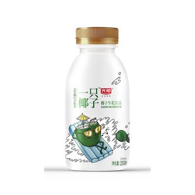 光明250ml椰子牛乳飲品四聯裝*6 (24瓶) 輕巧小包裝 美味不打折
