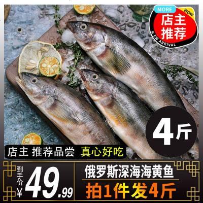 俄羅斯深海海黃魚海鮮冷凍水產黃魚六線魚4斤8-10條