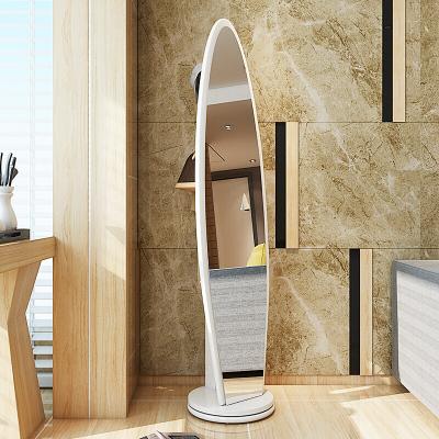 腾煜雅轩 简约现代客厅家具创意多彩全身落地镜子试衣镜壁挂梳妆镜子A款白色