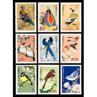 普31中国鸟