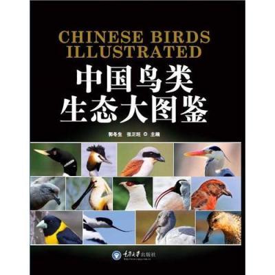 中國鳥類生態大圖鑒