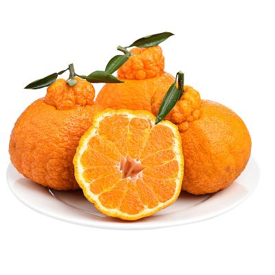 鮮菓籃 四川丑橘不知火丑八怪水果 丑柑橘子甜桔子 精品果5斤裝 新鮮水果 孕婦水果