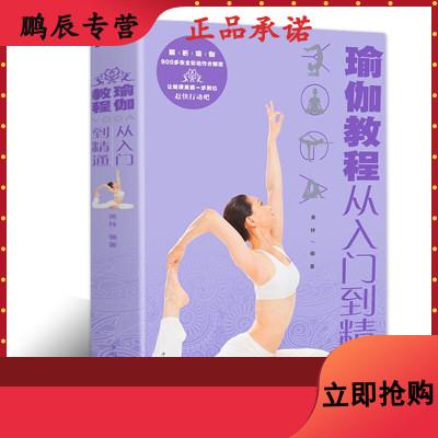 瑜伽书籍教程大全 从入到精通零基础美容全彩动作分解图 健康养生塑体美体健身高手