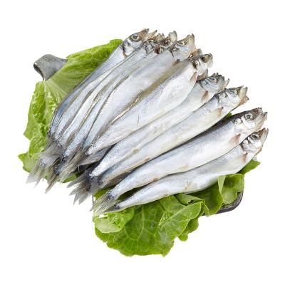 简单滋味 冷冻加拿大多春鱼500g(25-35条)