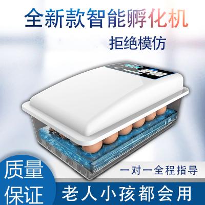 納麗雅(Naliya)孵化器小型家用孵化機全自動智能水床孵蛋器全自動家用型迷你兒童 9枚全自動智能滾軸單電