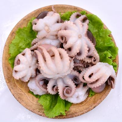四海生鮮 東山島自然海捕小章魚(5-14只)一口章小八爪魚 海鮮火鍋食材450g/盒