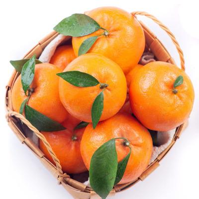 汇尔康(HR) 四川爱媛38号果冻橙 新鲜应季水果 非沃柑茂谷柑脐橙子甜桔子砂糖橘 中果60-75mm约2.5斤装
