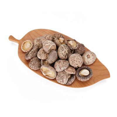 翔瑞欣特級花菇干貨菌類干貨家用煲湯食材