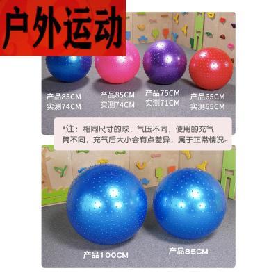 蘇寧好店感統顆粒按摩大龍球兒童前庭訓練器材觸覺早教運動健身家用玩具2212新款