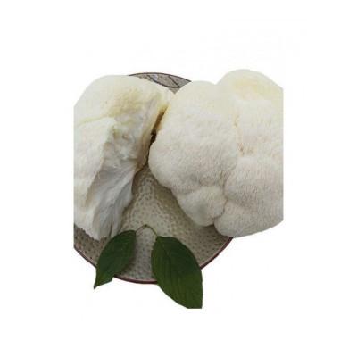 鲜猴头菇 海林冻新鲜蔬菜 东北 农家 顺丰冷链 500g