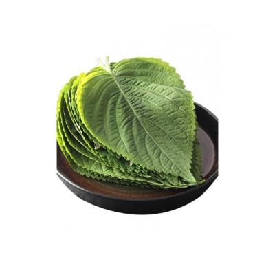 博多客 東北特產新鮮紫蘇葉蘇子葉韓式燒烤烤肉食材蔬菜生鮮新鮮  1kg