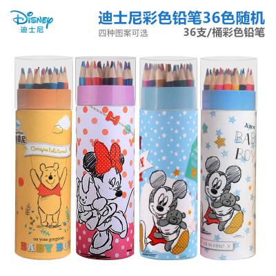 迪士尼(Disney)学生彩色铅笔套装 男女孩文具12/24/36色筒装 初学者手绘画专用铅笔(可备注卡通人物)