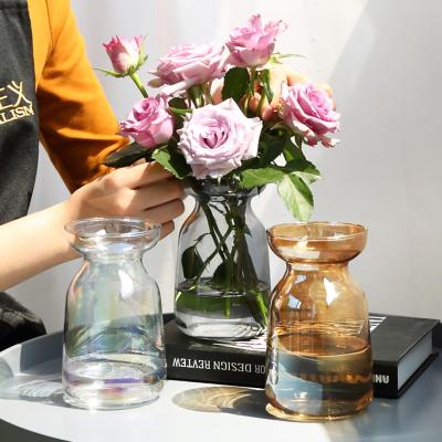 极光幻彩渐变简约小花瓶玻璃插花花器水培植物玻璃瓶清新桌面摆件