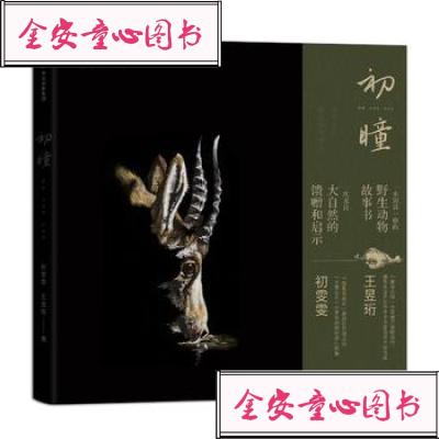 【单册】正版图书 初瞳:我和我的野生动物朋友 初雯雯 王昱珩 中信出版社