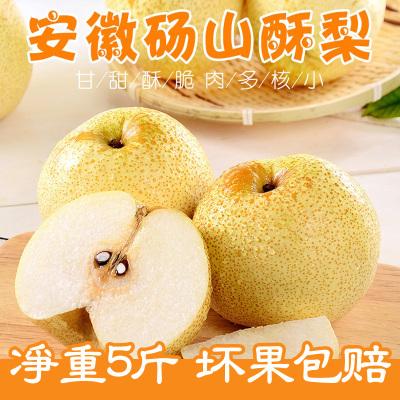 新鮮碭山酥梨5斤裝 當季青皮梨 梨子水果 脆甜多汁現摘梨碭山酥梨