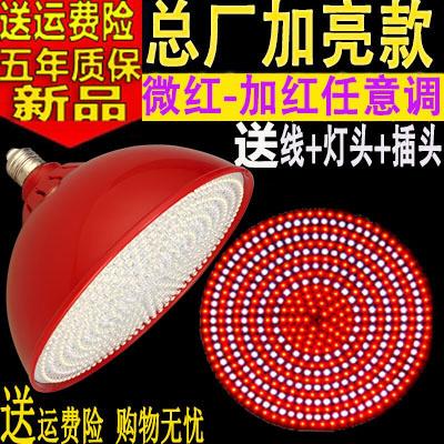 LED生鮮燈豬肉燈肉檔肉燈熟食燈海鮮 蔬菜水果燈冰冷鮮肉照肉燈 紅殼(紅光+暖白光)45