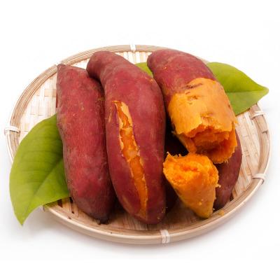 福建六鳌红薯 5斤中果 20-30个左右