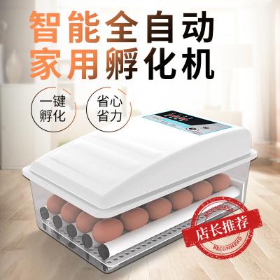 納麗雅(Naliya)孵化器全自動小型家用小雞鴨鵝蛋孵化機智能孵蛋器恒溫水床孵蛋箱 64枚全自動雙電藍