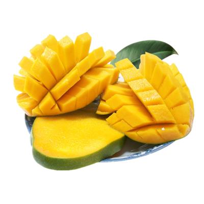 【靚果匯】【第二件減10元】越南進口大青芒5斤裝 單果500g+ 進口精選水果 蘇寧生鮮芒果