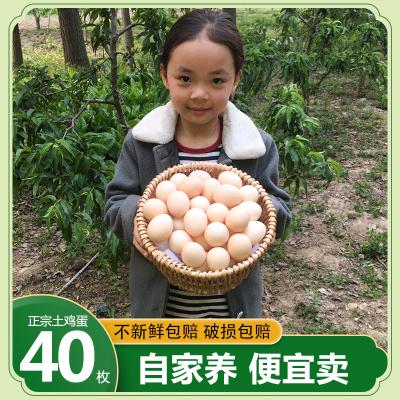 農家生態土雞蛋40枚裝 新鮮雞蛋草雞蛋笨雞蛋