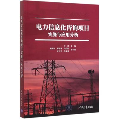 電力信息化咨詢項目實施與應用分析
