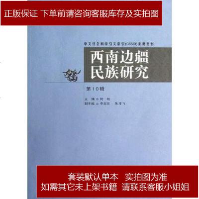 西南边疆民族研究(第10辑)