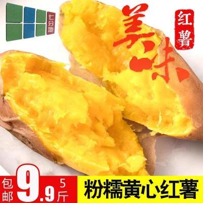 【中华特色】随县馆 黄心薯5斤 湖北沙地黄心地瓜 红薯