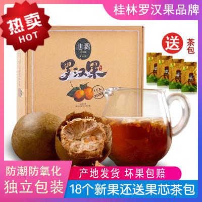 罗汉果干果 罗汉果茶泡水泡茶罗汗果广西 标准款 56-62MM 2盒共24个+送10袋果芯茶