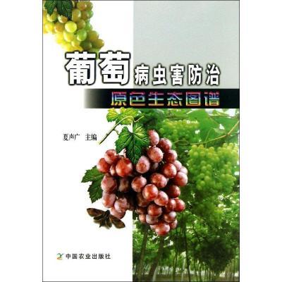 葡萄病蟲害防治原色生態圖譜9787109180352中國農業出版社夏聲廣